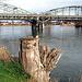 Zusammentreffen von Aare und Rhein