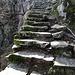 Tessiner Klassiker - Stufen