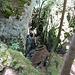 Tiefblick zur Leiter welche den Zustieg zur Eishöhle ermöglicht
