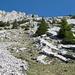 Im Aufstieg auf den Widderfeld: herrlich griffige Platten und nicht zu steiles Grasgelände