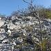 Tra rocce e detriti