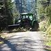 umgefallene Bäume werden beseitigt