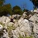 Man kann sich das Leben auch schwer machen - es geht auch einfacher im Abstieg vom Haggenspitz... (Foto von [u Schlumpf])