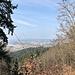 An der Schutzhütte auf dem Enggründlekopf (704 m): Blick runter zur Rheinebene ...