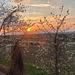 Die Sonne schickt am Fohrenberg einen letzten Gutenabend-Gruß von Westen herüber.