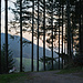 Hier treten wir aus dem Forst hinaus zum Tal von Seebach/Hinterseebach.
