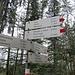 Den Abstecher/Aufstieg zur Gsohl Alpe nahmen wir noch in Kauf
