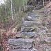 La mulattiera: a tratti scalinati a tratti sentiero sassoso.