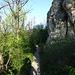 der leicht alpine Weg führt unter die Felsen, auf der die Ruine Rosenstein steht - diese Felsen sind ein Klettergebiet