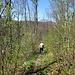 Abstieg nach Weissenstein - nochmals ohne Schotter