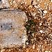 Eingelassene Steine  zwischen Le Bémont und PP, wofür?