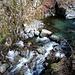 lungo il fiume Vedeggio per il sentiero basso
