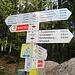 Am Kolmenkreuz machten wir noch den Abstecher zur Martinskapelle, kehrten dann hierher zurück und stiegen zum Wolfhof ab.