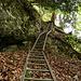 Der Leiterweg!