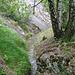 Oberhalb dieser Felsplatten fliesst die Stägeru