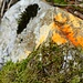 ...orangerotes Holzerzeichen.