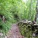 Ein alter, ruppiger Alpweg führt zum Schluss nach Schnepfau runter