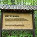 Gebet des Waldes