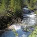 """Der Wildbach """"Le Motélon"""" durchfliesst das gleichnamige Tal von Süden nach Norden und mündet bei Charmey in den Lac de Montsalvens"""