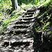 zum Schluss helfen ein paar Stufen
