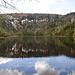 Am Plöckensteiner See angekommen