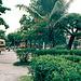 Buspark in Dar es Salaam