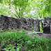 Ruine Friesenburg.