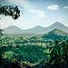 Drei der Virunga Vulkane bei der Anfahrt: Sabyinyo, Gahinga und Muhavura