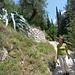 ..neue Wanderwege vom Castel hinab nach Arco.