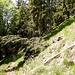 Ich passierte dabei noch einmal die eine oder andere Stelle, die beim Aufstieg wichtig gewesen war: Zum Beispiel die, an der in etwa 1160, 1170 Meter Höhe die weiß-roten Markierungen in die Flanke führen.