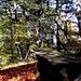 auf dem Schwarzenberg 1286m