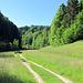 Unterwegs im Mutzbach-Graben.