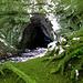 Zur rechten Seite entdeckten wir plötzlich das unscheinbare Bachtunnel.