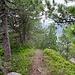 Auf dem Grat im Abstieg vom Roggenstock.