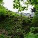 Im Abstieg über Laueli nach Weglosen.