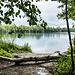 Eine wilde Badestelle am ersten Baggersee, auf