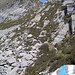 Dalla Bocchetta di Orgnana si perdono 20-30 metri di dislivello fino ad incrociare i segnali di colore Bianco-Blu dell' Alta Via.<br />Il Pizzo d'Orgnana è già ben visibile...