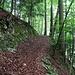 Aufstieg zum Weglein auf dem Erzenberggrat.