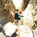 Die Via Ferrata Zandonella ist im Abstieg ziemlich anspruchsvoll. Die Route führt meist direkt in die Tiefe, und folgt dabei immer wieder natürlichen Gegebenheiten, wie Verschneidungen und steilen Schluchten.