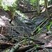 Im Zickzack wird der Hang immer steiler, die Brücken wurden konsequent in das Tobel verbaut :-D