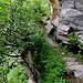 Spektakulär in der Felswand! Unfassbar die Mühen und Gefahren, die es vor langer Zeit beim Bau zu bewältigen galt.