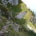 Auf dem Abstieg zum Col de Jaman