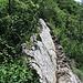 Obwohl es genügend Griffe und Tritte im soliden Fels gibt, ist eine Stelle mit einem Drahtseil gesichert.