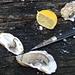 En Bretagne, France. Apres St-Malo.