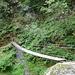 erste Brücke mit hoher Schwankungsbreite