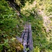 Weg im grünen Bereich
