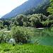 Ausläufer des Lac de Montsalvens