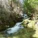 Ruisseau de Gournier