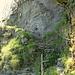 Der Weg durch das letzte Felsband wurde als Halbgalerie ausgemeisselt. Das Rundholz stammt noch von der Leiter, die A. Planta beschrieben hat. Heute helfen die Trittsteine an der Felswand und das Kabel.