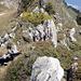 ...zuerst aber jetzt noch vom Gipfel über den Grat kraxeln der nur wenige Meter oberhalb der Furgge endet.